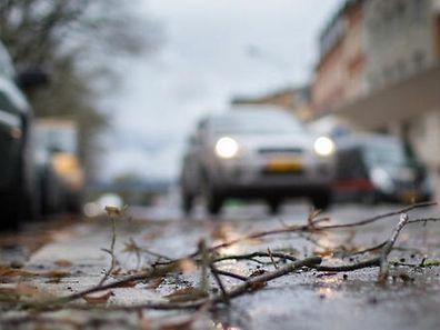 Meteolux annonce des rafales de vent pour tout le pays ce lundi à partir de 13 heures et jusqu'avant minuit.