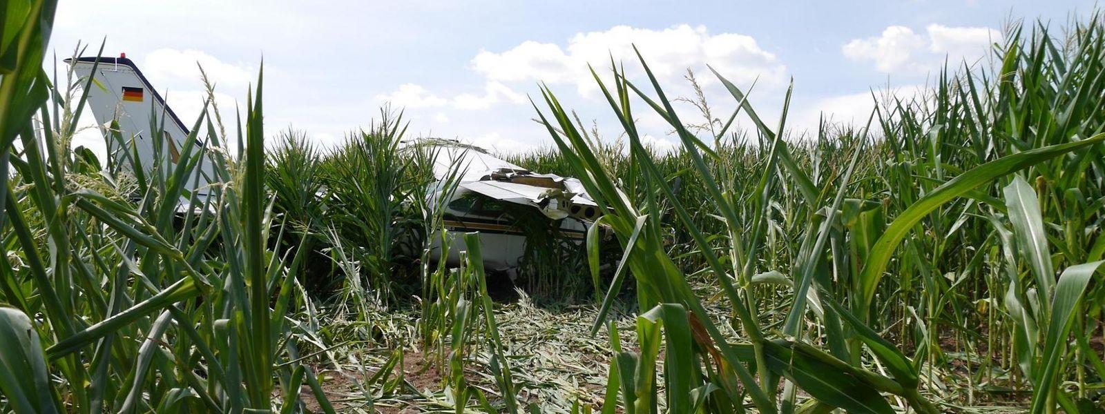 Das Flugzeug fiel in ein Maisfeld zwischen dem Flugplatz Bitburg und dem Bitburger Stadtteil Mötsch.