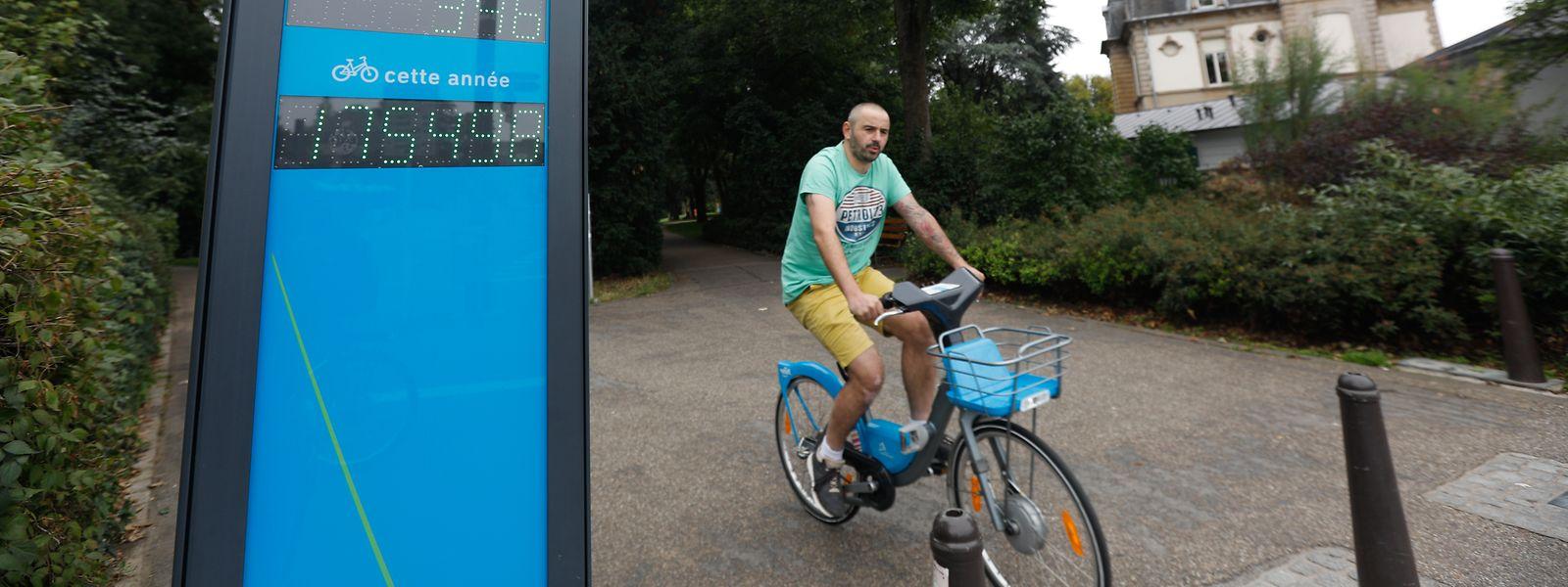 Im August waren an dieser Zählstation am Eingang des Stadtparks 175.498 Radfahrer registriert worden.