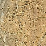 Investigadores podem ter descoberto no Côa o maior painel de arte rupestre ao ar livre