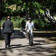 Radfahrer und Fußgänger auf einem Weg im Stadtpark - Photo : Pierre Matgé