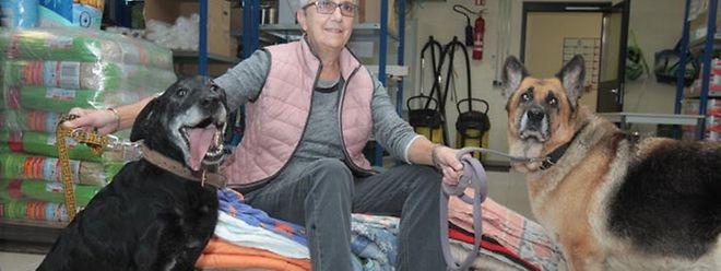 """""""Es geht um die Zukunft unserer Hunde"""", so Liliane Ferron aus dem Tierasyl in Gasperich."""