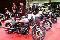 Auswahl von Harley-Davidson Modellen / Foto: Lucien WOLFF