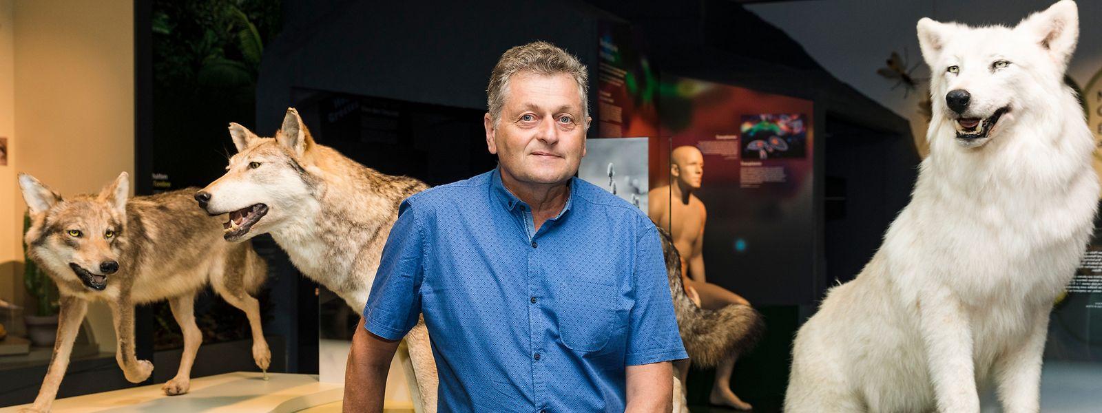 Alain Faber, Direktor des Naturmusée.