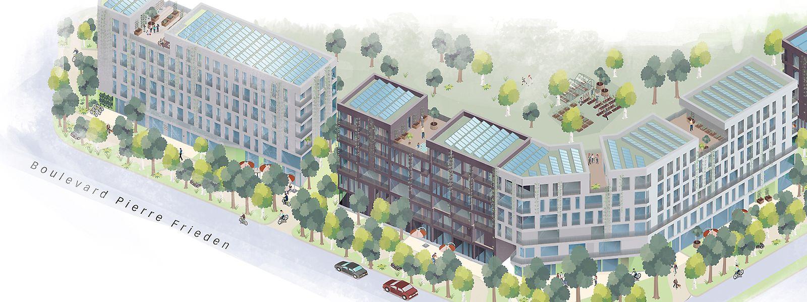 Le projet Kiem 2050 devrait accueillir entre 325 et 425 habitants.