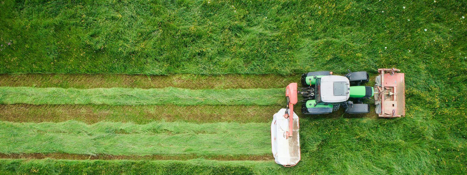 Die Landwirtschaft soll eine wichtige Säule des Landes bleiben. Das ist eines der Ziele des Regierungsabkommens. Romain Schneider soll dafür sorgen, dass dies in den kommenden fünf Jahren gelingt.