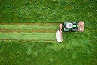 Landwirtschaft - Photo : Pierre Matgé