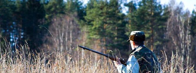 Bei einer Jagd in der belgischen Provinz Namur ist es zu einem tragischen Jagdunfall gekommen.