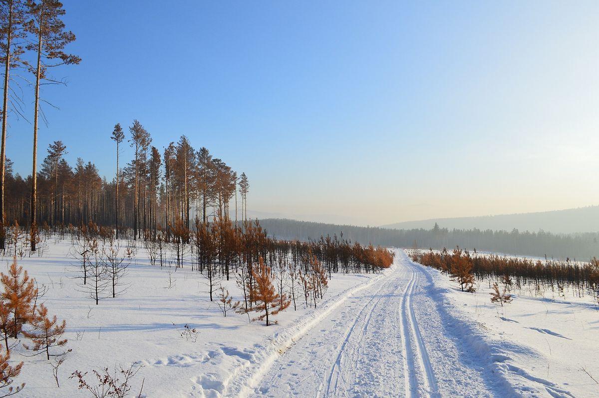 Schmilzt der Permafrost ab, sackt der Boden ein.