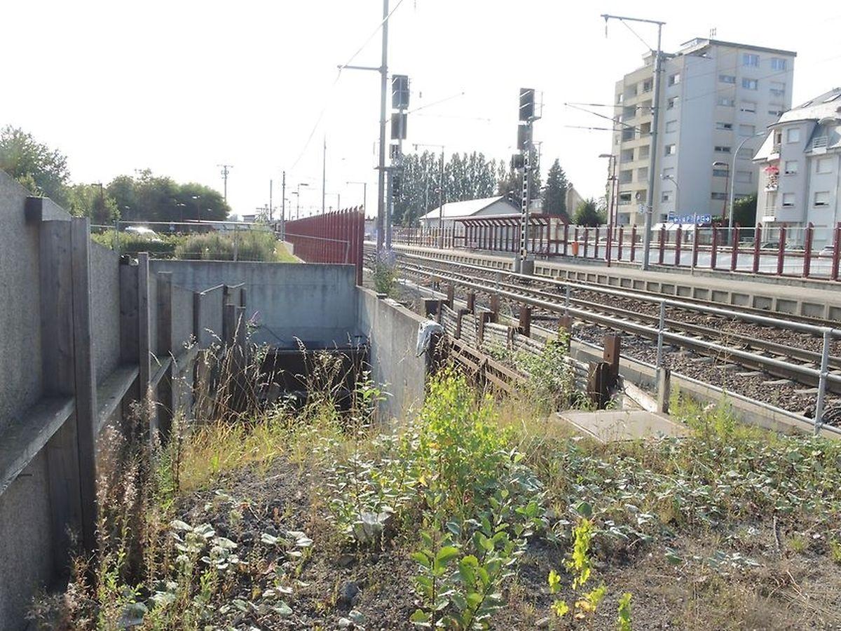 Auch diese unvollendete Fußgängerunterführung könnte nach Fertigstellung der Umgehung endlich zu Ende gebaut werden.