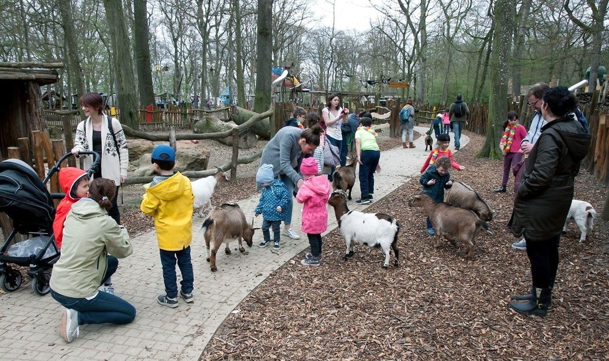 A visit to Parc Merveilleux Photo: LW archive