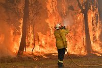 """TOPSHOT - A firefighter conducts back-burning measures to secure residential areas from encroaching bushfires in the Central Coast, some 90-110 kilometres north of Sydney on December 10, 2019. - Toxic haze blanketed Sydney on December 10 triggering a chorus of smoke alarms to ring across the city, as Australians braced for """"severe"""" weather conditions expected to fuel deadly bush blazes. (Photo by Saeed KHAN / AFP)"""