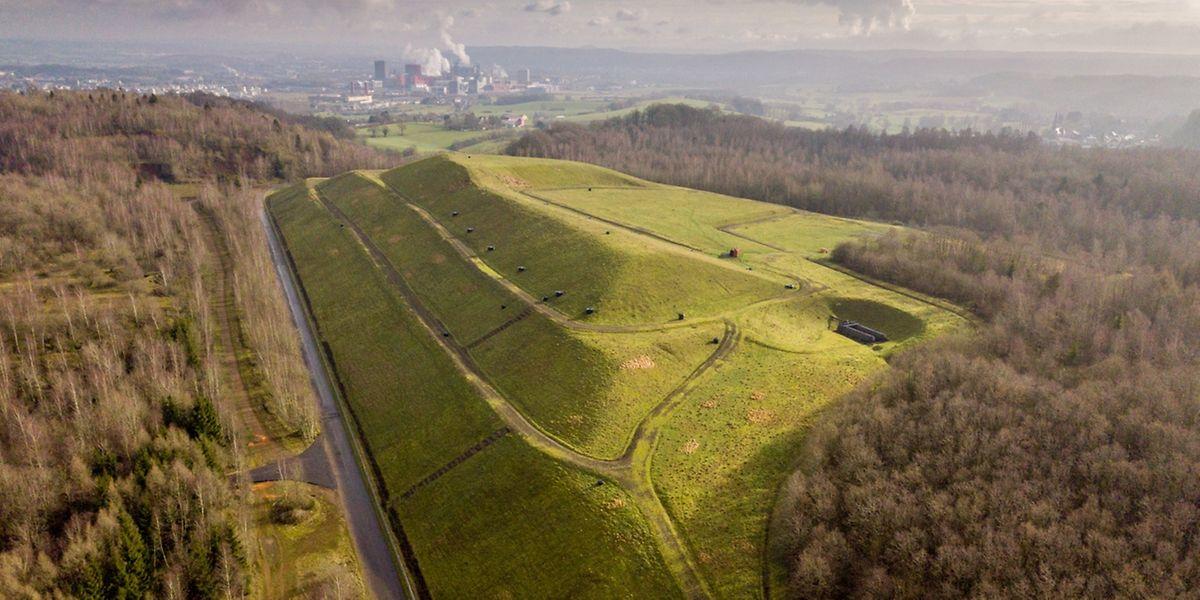 Die frühere Deponie liegt zum Teil auf Oberkorner und zum Teil auf Beleser Seite.