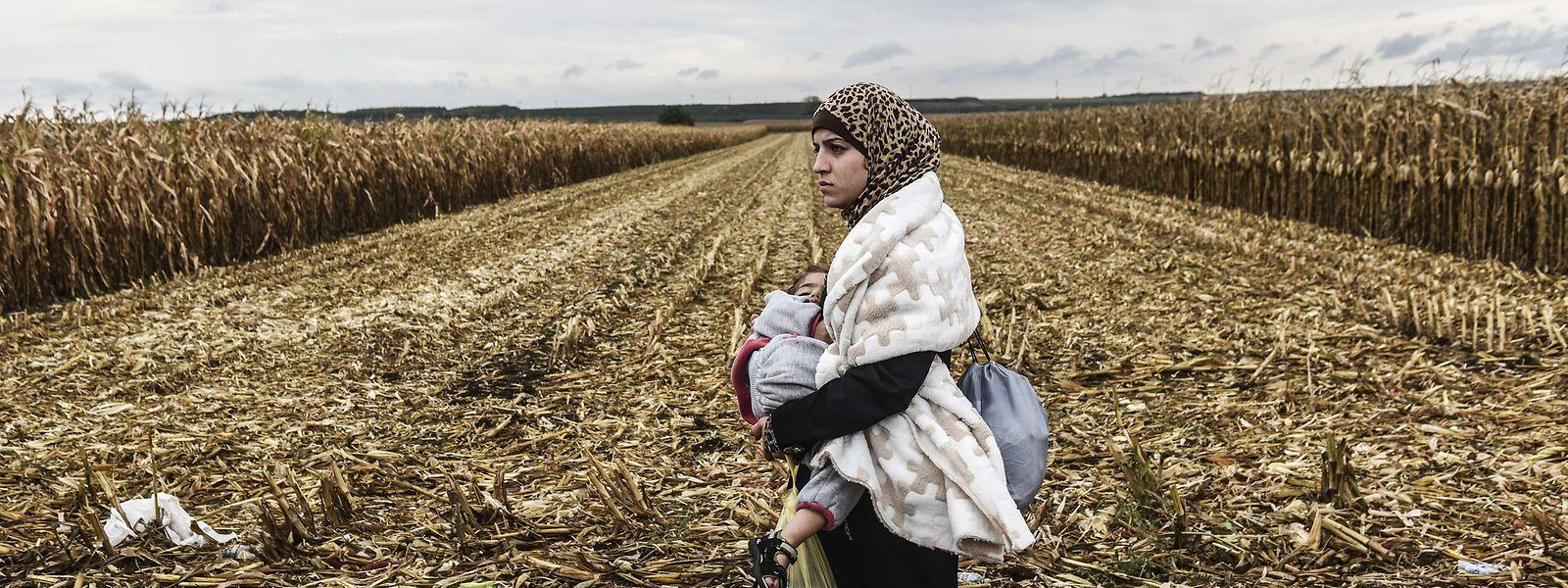 In Ungarn ist seit dem 1. Juli diesen Jahres ein verschärftes Asylrecht in Kraft.