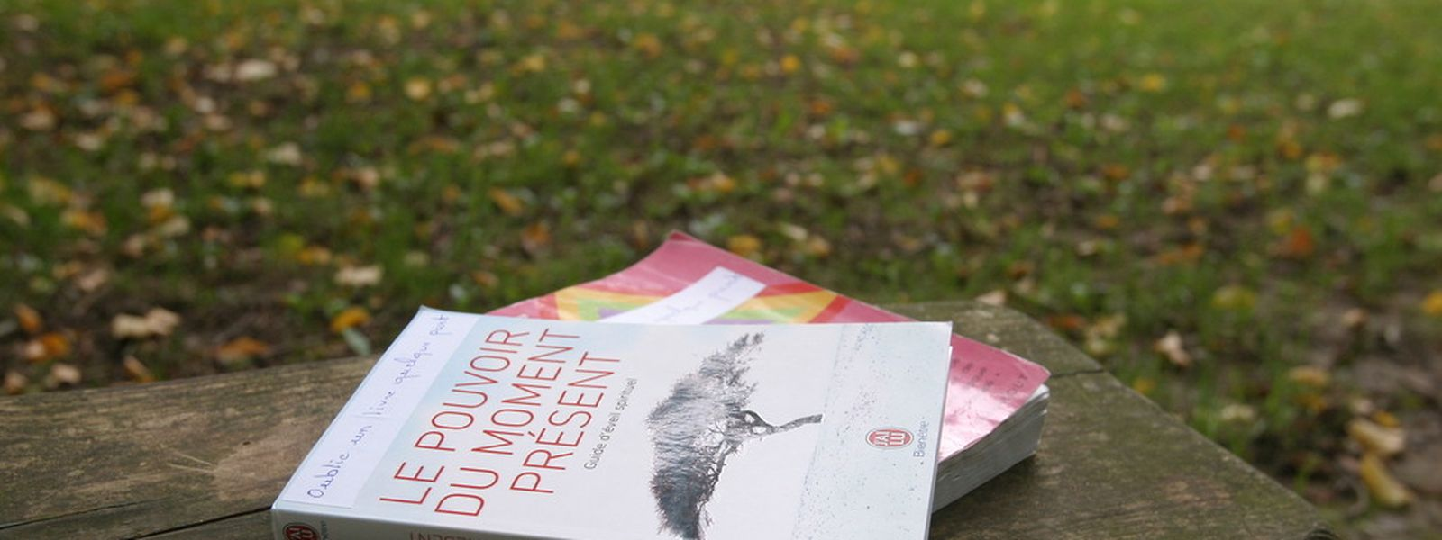 """Une simple étiquette indiquant """"Oublie un livre quelque part"""" permettra à chacun de voir très vite que l'objet a été posé là intentionnellement."""