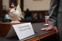 """Politischer Humor: Der demokratische Abgeordnete Steve Cohen empfindet das Fernbleiben Barrs offenbar als feige (""""chicken"""") - und stellt daher eine Hühnerfigur auf Barrs leergebliebenen Platz."""