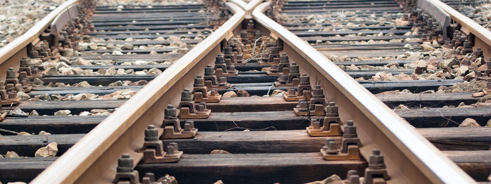 Das gesamte Schienennetz der CFL wird regelmäßig mit Herbiziden behandelt.