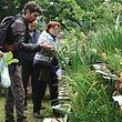 Eintauchen ins Reich der Pflanzen bei der 17.ten  Pflanzenbörse in Stolzemburg / Foto: Armand WAGNER