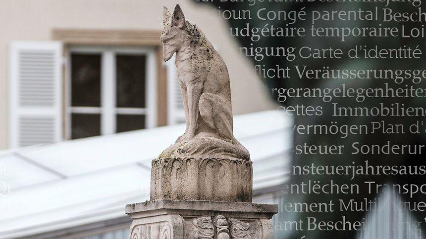 Luxemburgisch als Amtssprache - ein unrealistisches Vorhaben?