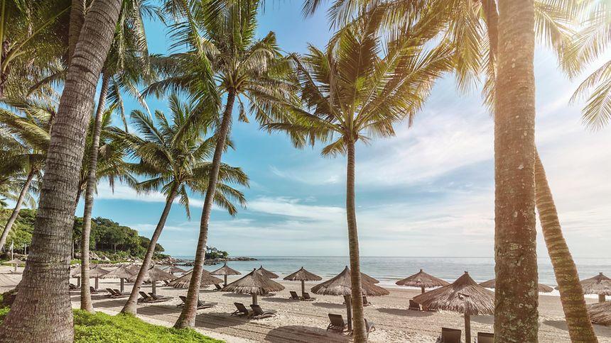 """Der """"Club Med Bintan"""", an dessen Strand Sonnenanbeter entspannen können, ist mit der Fähre in rund einer Stunde von Singapur aus erreichbar."""