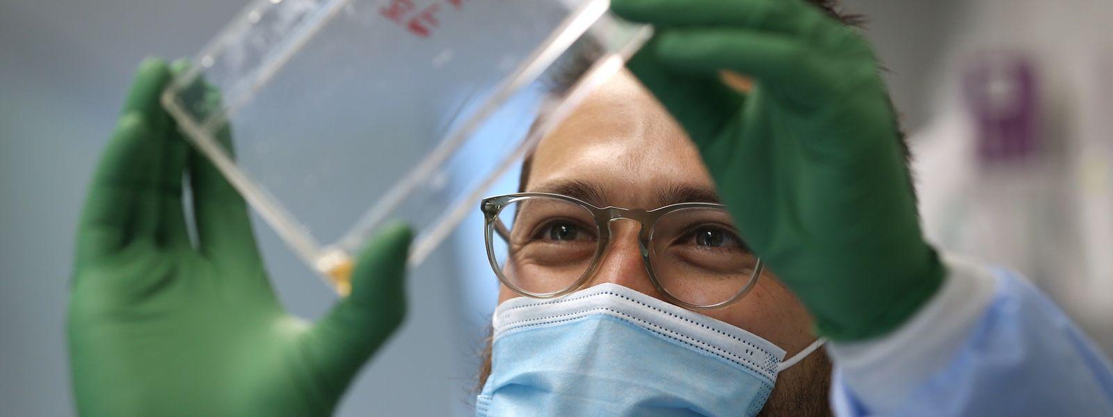 Le Laboratoire national de santé réussit désormais à séquencer près de 300 échantillons covid par semaine.