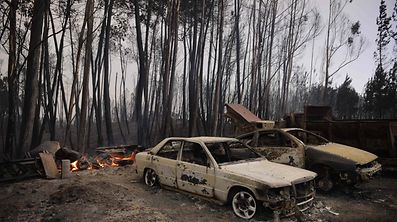 A picture taken on June 18, 2017 shows burnt cars in an arear devastated by a wildifre near Castanheira de Pera
