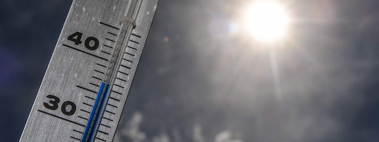 Mit bis zu 37 Grad soll der Mittwoch der heißeste Tag der Woche werden.