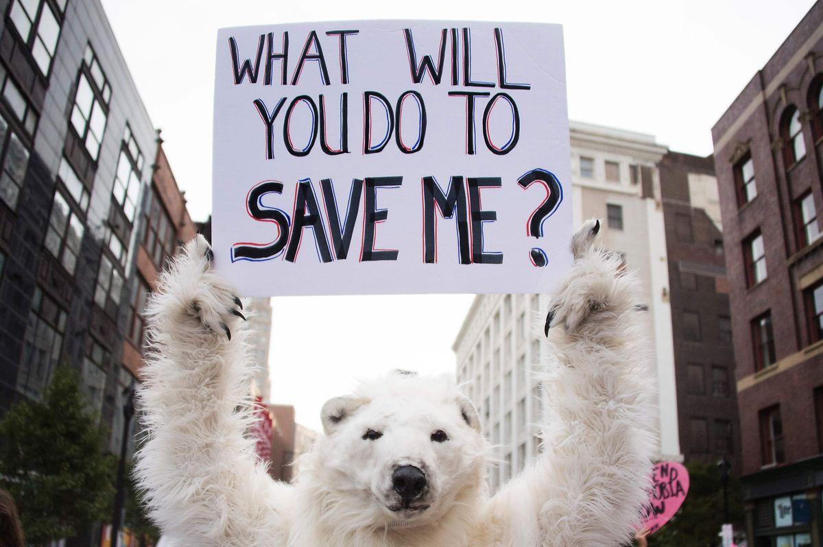 Global denken, lokal handeln: Jeder kann durch sein Tun beziehungsweise Nichtstun einen konkreten Beitrag gegen die Erderwärmung leisten.