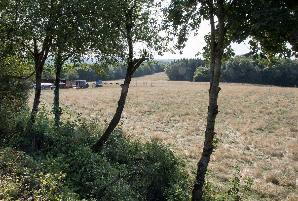 La zone protégée Léiffrächen est située au sud-est d'Esch-sur-Alzette, sur les hauteurs, entre Tétange, Kayl et Rumelange.