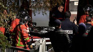 Feuerwehrleute beseitigten nach dem Zwischenfall den Kadaver des Tieres.