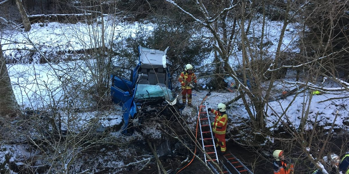Die Fahrerin zog sich schwere Verletzungen zu.