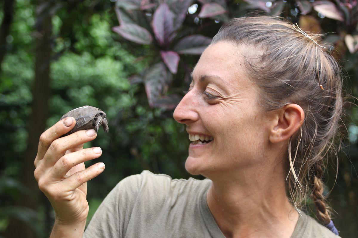 Die italienische Meeresbiologin Anna Zora kümmert sich auf der Insel Frégate um die bedrohten Reptilien.