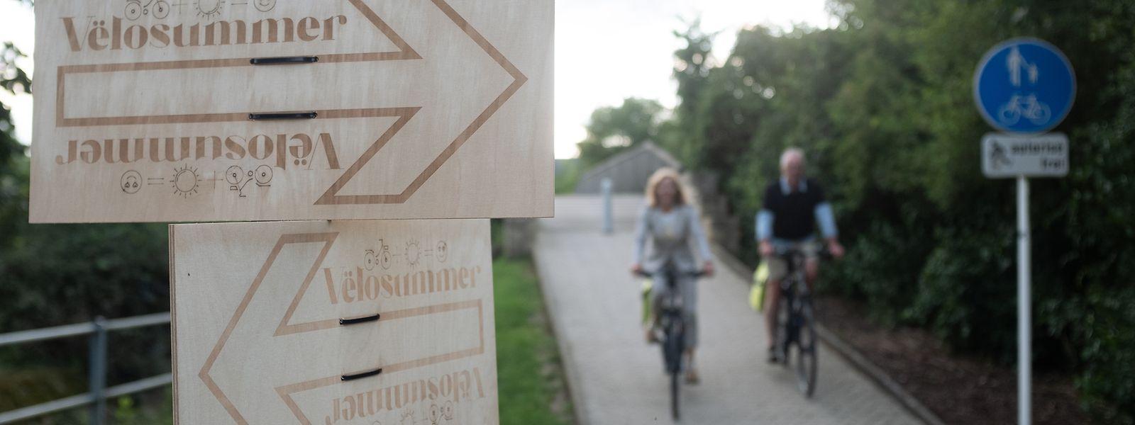 Die Rundwege sind sowohl mit Holztafeln als auch mit Bodenmarkierungen gekennzeichnet.