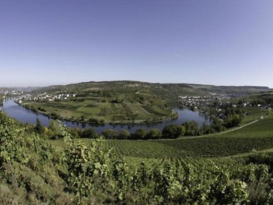 A panoramic view over the Moselle valley. The summer of 2014 was the second sunniest and second wettest since records began in Luxembourg.