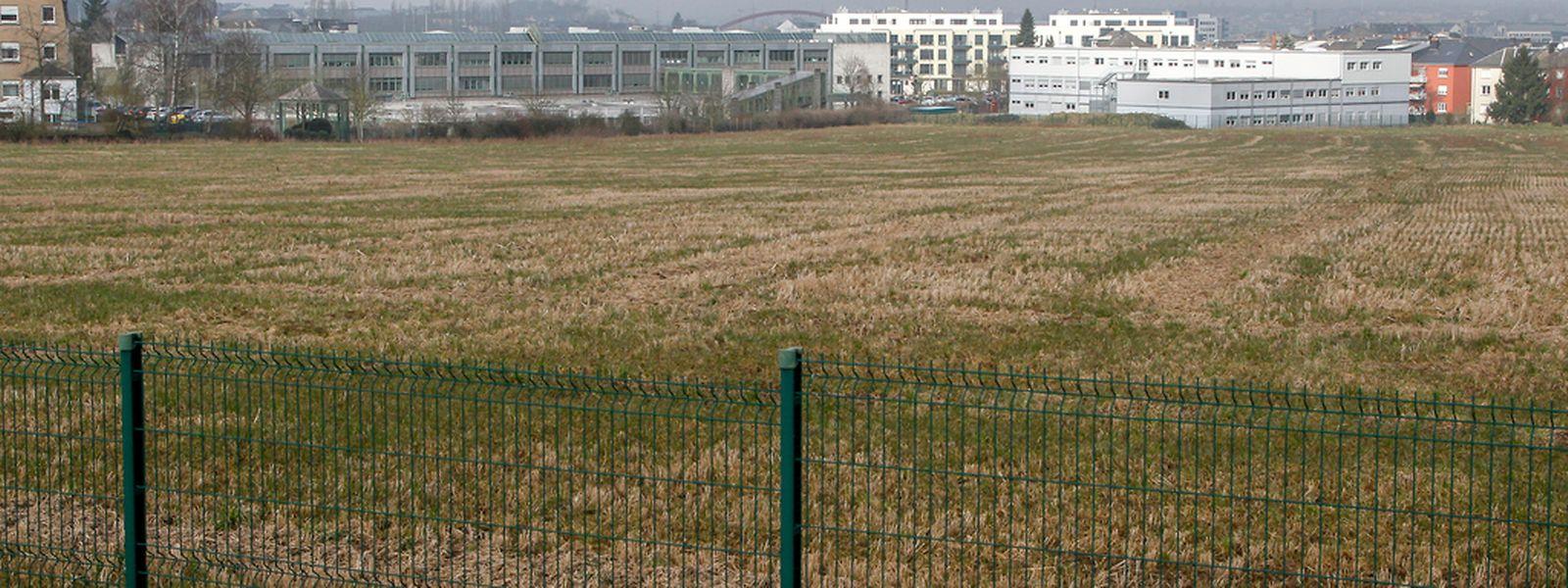 """Auf diesem Gelände soll das neue Gebäude des """"Lycée technique de Bonnevoie"""" entstehen."""