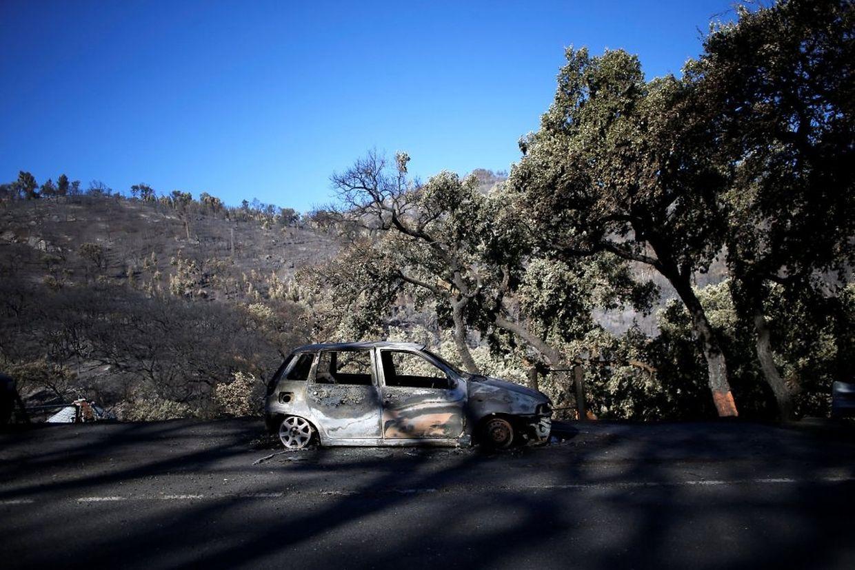 Fogo em Monchique tem destruído tudo à sua passagem desde sexta-feira: terrenos, árvores, casas, carros e outras estruturas.