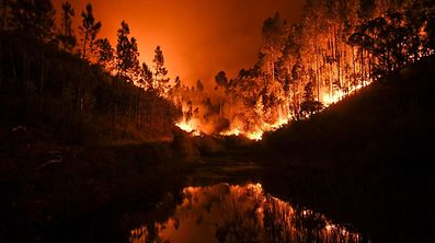 A wildfire is reflected in a stream at Penela, Coimbra, central Portugal.