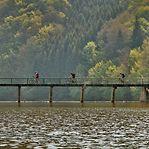 Quer conhecer melhor o Luxemburgo de bicicleta?
