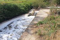 Die ohnehin stark belastete Korn wurde am 31. Juli 2019 durch Löschwasser arg strapaziert. Schuld war ein Überlaufbecken, das nicht wie vorgesehen funktionierte.