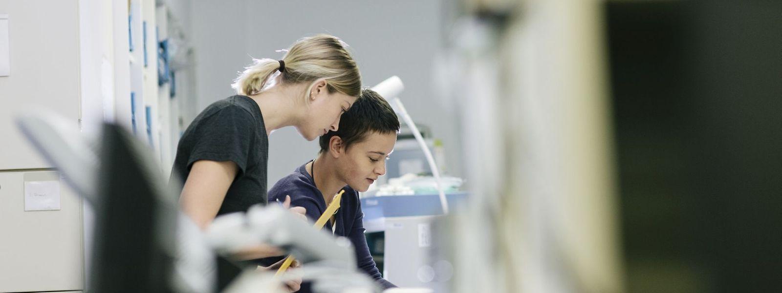 In Zukunft können Studierende in Luxemburg leichter ein Praktikum absolvieren.