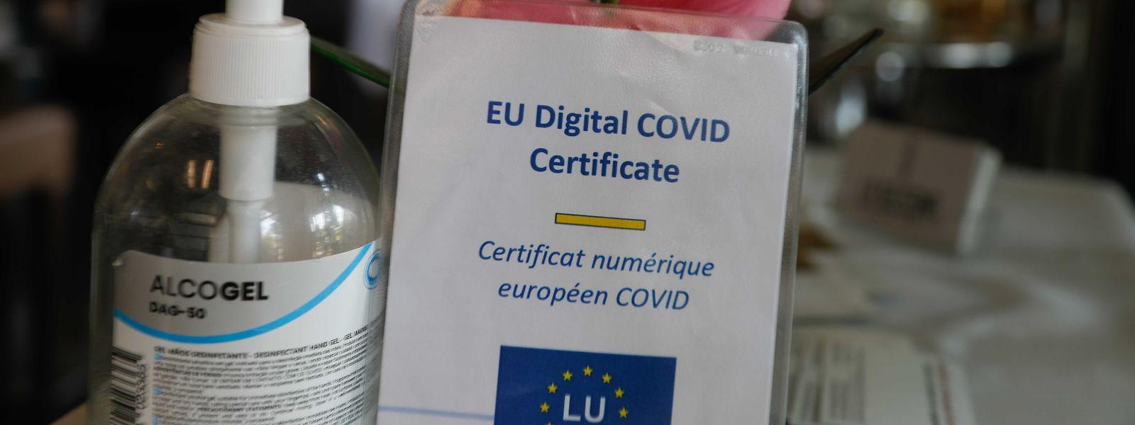 Die verschärften Covid-Check-Regeln seien eine indirekte Impfpflicht, moniert die Menschenrechtskommission.