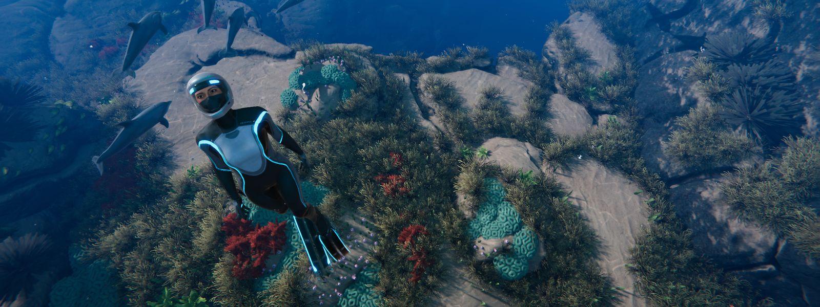 """Im Mittelpunkt von """"Beyond Blue"""" steht die Erkundung der wunderschönen Unterwasserwelt."""
