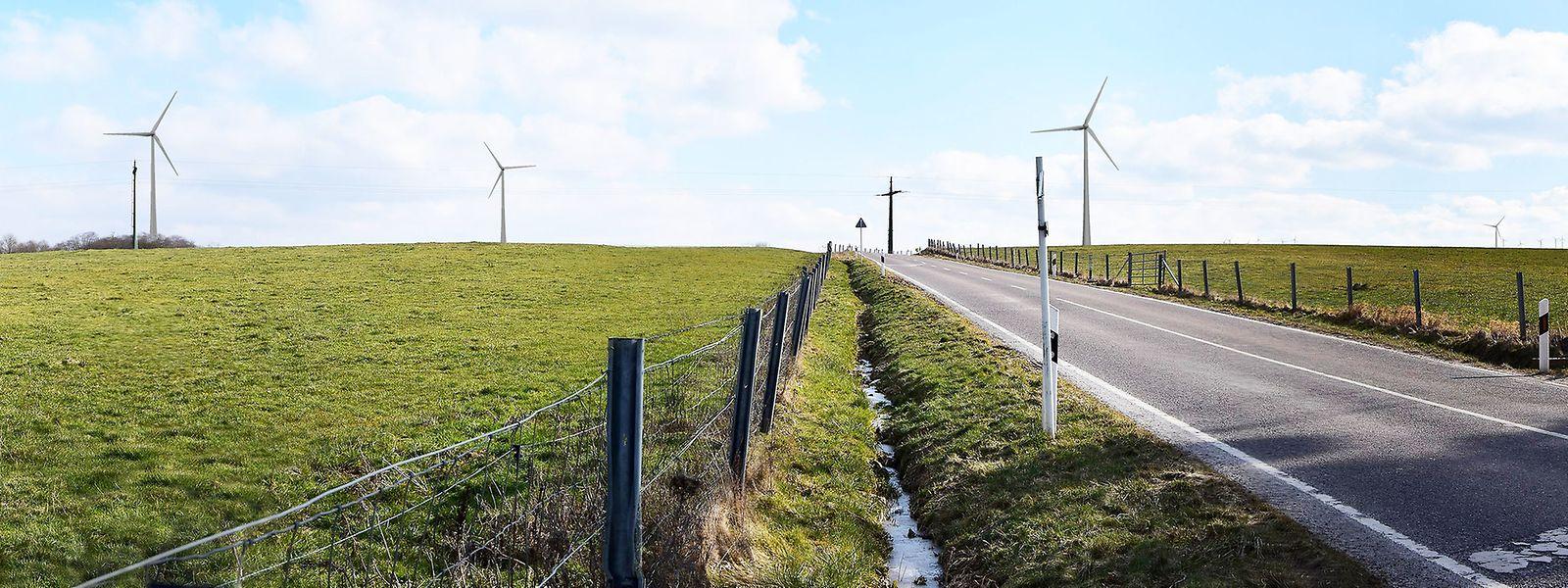 Die Fotomontage zeigt den Blick auf der Landstraße von Hassel in Richtung Dalheim.
