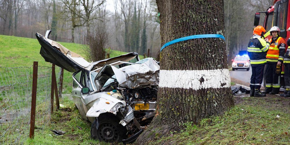 Der Fahrer prallte auf der N12 frontal gegen einen Baum und starb noch an der Unfallsstelle.