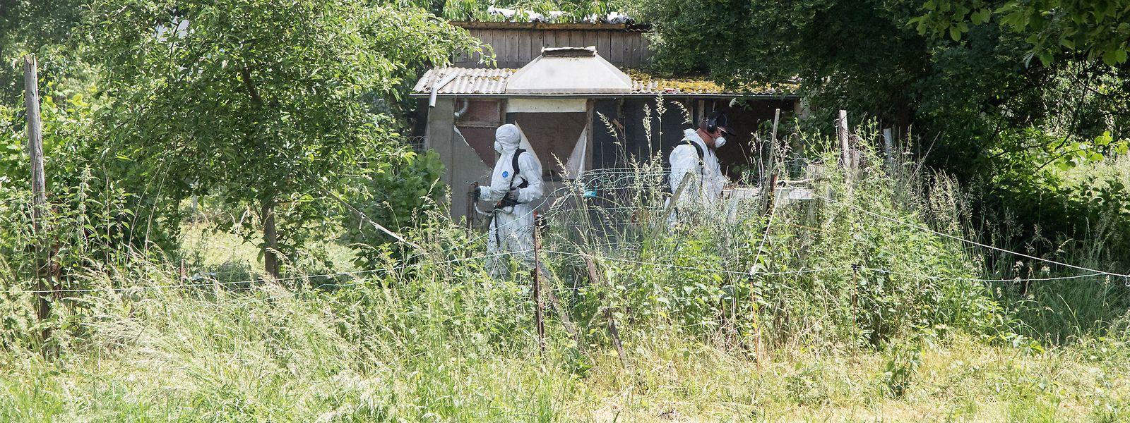 Am 30. Mai 2018 wird in dieser verlassenen Schrebergartenanlage inmitten eines Wohnviertels eine stark verweste Leiche entdeckt. Auch nach dem Prozess bleibt der Fall rätselhaft.
