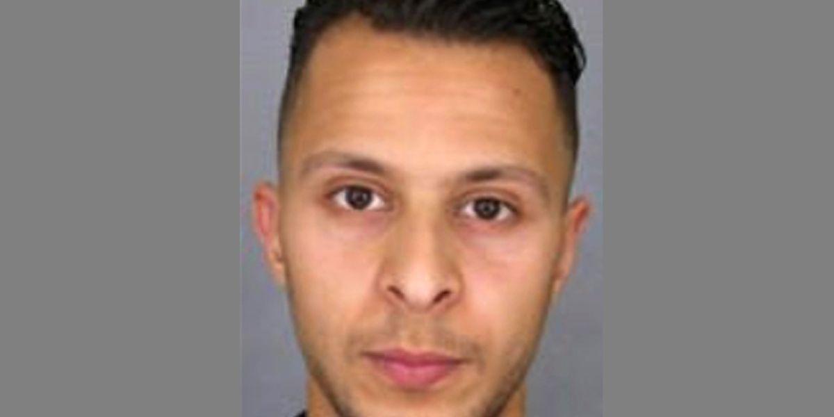 Salah Abdeslam souhaite collaborer avec la police selon son avocat.