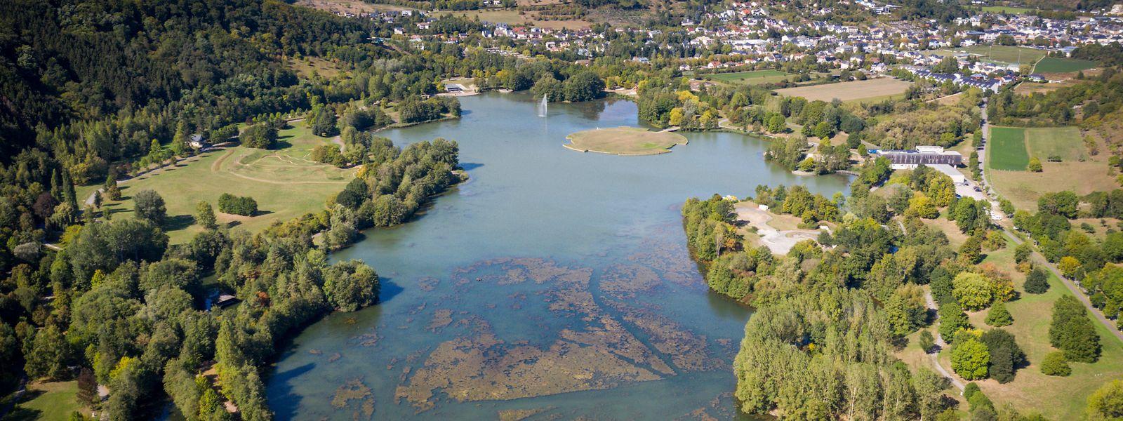 Auf dem Grund des 27 Hektar großen Sees hat sich seit der Anlegung des Freizeitgeländes eine dicke Schlammschicht gebildet.