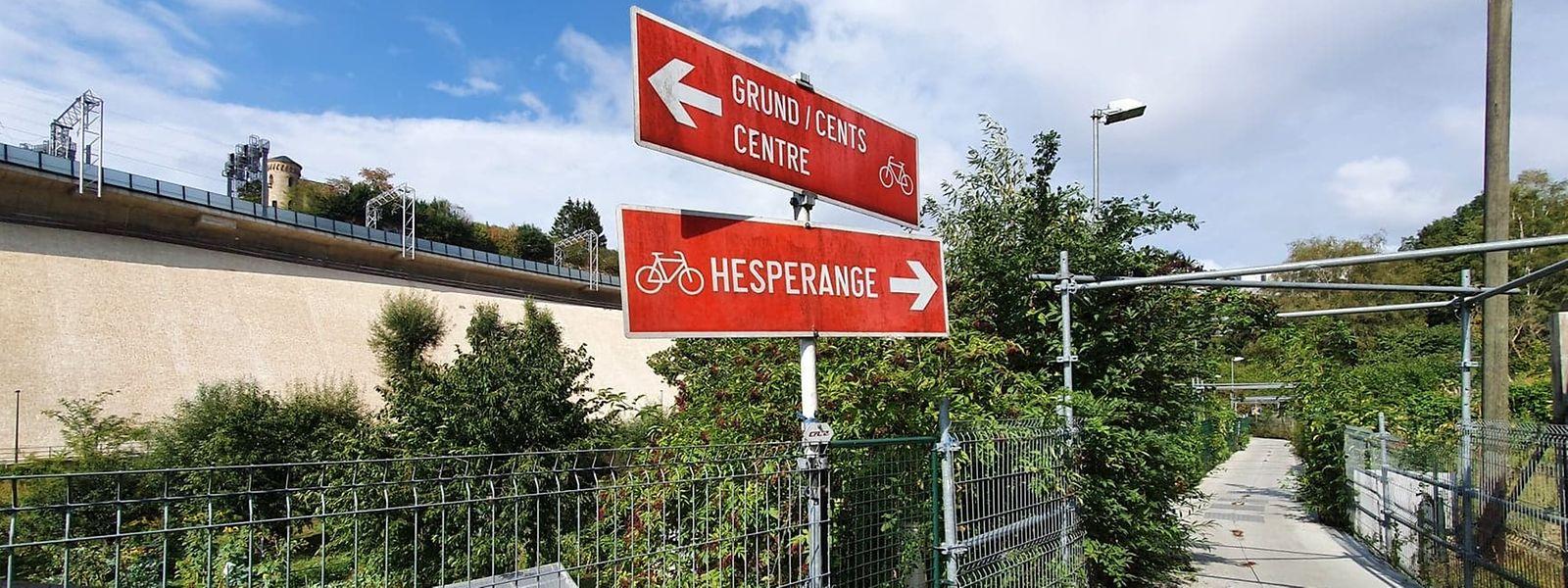 Die provisorische Radpiste führt seit 10 Jahren mitten durch die Kleingartenanlage Bisserwee auf der Bonneweger-Seite der Alzette.