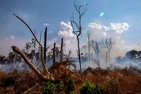 TOPSHOT - View of a burnt area after a fire in the Amazon rainforest near Novo Progresso, Para state, Brazil, on August 25, 2019 - Brazil on Sunday deployed two C-130 Hercules aircraft to douse fires devouring parts of the Amazon rainforest, as hundreds of new blazes were ignited and a growing global outcry over the blazes sparks protests and threatens a huge trade deal. (Photo by Joao Laet / AFP)