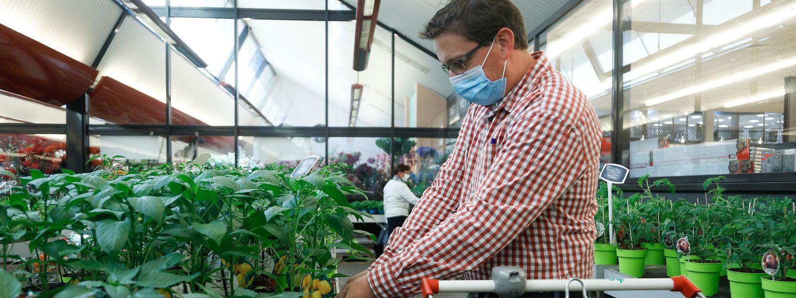 Les enseignes de bricolage-jardinage ne sont plus concernées par la possibilité d'allongement du temps de travail.